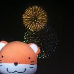 ダブル花火とNo,6