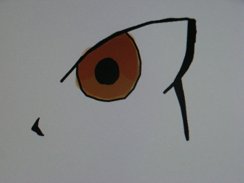 狩屋マサキ『目』
